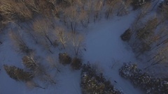 Deer running through woods in the winter 4k aerial Stock Footage