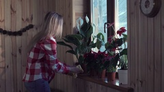 Young woman arranging flowers on window sill Stock Footage