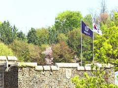 Yonsei University And Korean Flag Main Quadrangle Trees Seoul Campus Day Stock Footage
