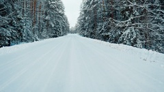 DRIVING PLATE car moving on snowy road, forest trees covered with snow Stock Footage
