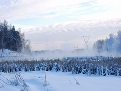 Steam over the river on a frosty winter day Stock Footage