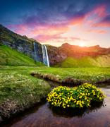 Morning view of Seljalandfoss Waterfall on Seljalandsa river in summer Stock Photos