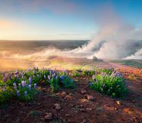 Erupting of the Great Geysir lies in Haukadalur valley Stock Photos