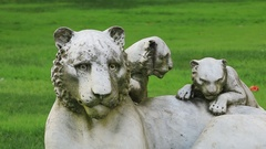 Marble sculpture of a lioness with two cubs Stock Footage