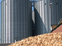 Silos storage agriculture ,wheat in the hand after harvest  Stock Footage