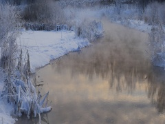 Steam over the river and dry coastal thickets in a frosty winter day Stock Footage