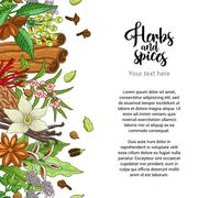 Vector bakery card design with spices and herbs Stock Illustration