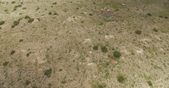 Aerial drone 4k shot above desert in Europe at summer Stock Footage