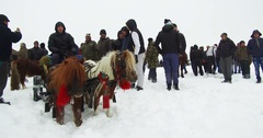 Pony drawn cart, in snow Stock Footage