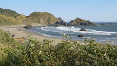 Lone Ranch Beach, Brookings, Oregon (panning) Stock Footage