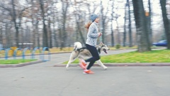 Footage of young girl running with her dog, alaskan malamute Stock Footage
