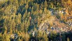 Moving Past Forest And Cliffs At Sunset Stock Footage