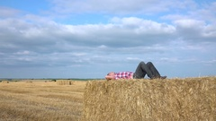 Lying on the hay Stock Footage