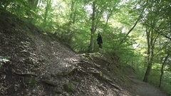 Beautiful green forest with gimbal, trees, man standing Stock Footage