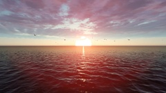 Flocks of Birds Flying in Front of Beautiful Sun Rise Over The Ocean Stock Footage