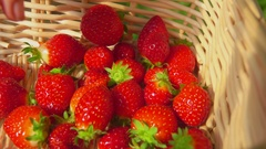 Fresh strawberries placed in basket Stock Footage