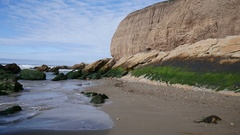 Seascape Pan from Tall Cliffs To Rocky Shoreline Green Moss Blue Sky  4k Stock Footage