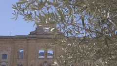 Watch the city through the olive groves in south Italy Stock Footage
