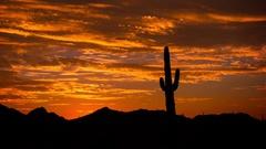 Arizona Desert Sunrise Timelapse Stock Footage
