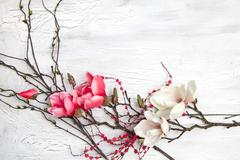 Hello spring background with flowers Stock Photos