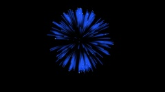 Colorful single firework at night. Spectacular single firework firecrakers 3d Stock Footage