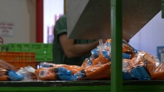 Work at the factory . Workers at the conveyor sorting packaged carrot Stock Footage