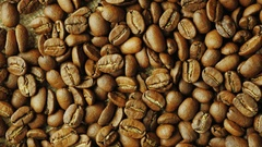 Robusta grains fall down on the grain Arabica coffee. Mixing different varieties Stock Footage