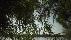 Gimbal slow motion shot at Danube, Dunau at summer and trees Stock Footage