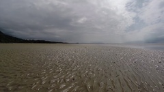 Walking along muddy mangrove beach during low tide Stock Footage
