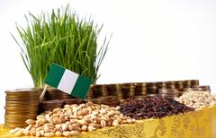 Nigeria flag waving with stack of money coins and piles of wheat and rice see Kuvituskuvat