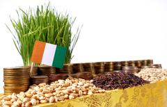 Ivory Coast flag waving with stack of money coins and piles of wheat and ri.. Stock Photos