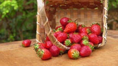 Hand picks juicy strawberry from a basket Stock Footage