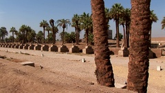 Sphinxes Avenue in Luxor Temple pan Stock Footage