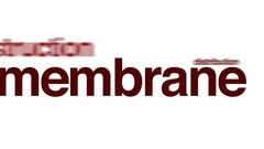 Membrane animated word cloud, text design animation. Arkistovideo