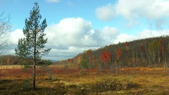 Autumn Landscape - meadow and small hill on the background of the beautiful sky. Stock Footage