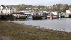 Oban harbour Scotland uk Scottish west coast port in spring pan Stock Footage