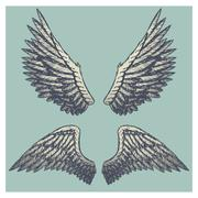 Hand drawn vector vintage illustration - naturalistic spread wings sketch Stock Illustration