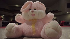 Big plush Bunny dancing on the stage of the theatre Stock Footage