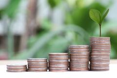 Young plant grown to stack silver coin in business growth concept. Stock Photos