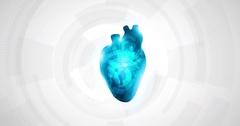 Heart mechanism Stock Footage
