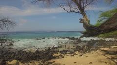 Tropical Paradise Jungle Beach. Le Perouse, Maui Jib Down to Beach and Girls Stock Footage