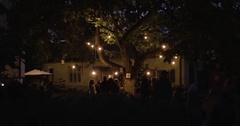 Glowing Tree, Festive Atmosphere Stock Footage