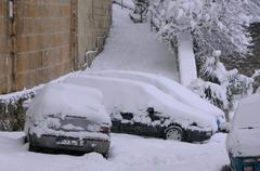 Snow-covered Cars and Vegetation Stock Photos