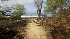 Aerial Tropical Jungle Paradise Beach Maui, Flying Down Path to Beach and Girls Stock Footage