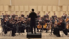 Classical orchestra playing on symphony stage, noble job Stock Footage