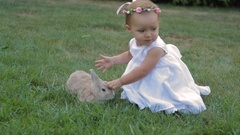 Little girl in a white dress stroking the rabbit Stock Footage