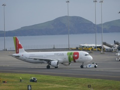 Airliner Airbus A321 of TAP Portugal Pulled Back by a Tracktor at Madeira 4K Stock Footage