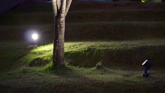 Tree uplight at lawn garden. Landscape and lighting design for park Stock Footage