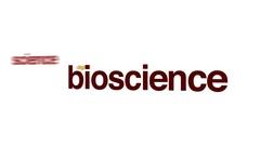 Bioscience animated word cloud. Stock Footage