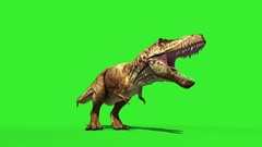 T Rex Tyrannosaur Feathered Roar Down Loop Jurassic World Dinosaurs Green Screen Stock Footage